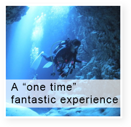 "A ""one time"" fantastic experience"